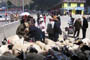Genyen Jamyangling buying sheep to be set free